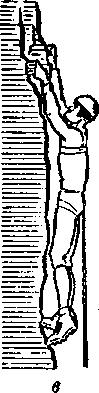 pol-korusa872