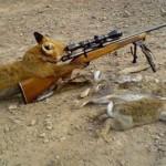 Лиса с винтовкой